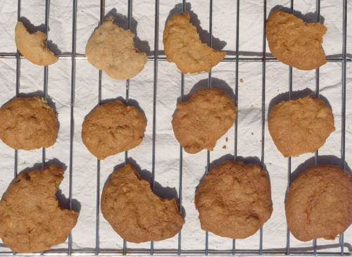 Cookies2020-5-1stbatch-Lp1170104.jpg